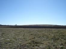 NVCA field